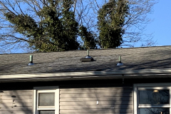 New-Roof-for-365-George-Road-2